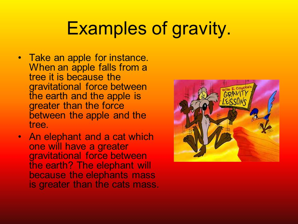 Examples of gravity. Take an apple for instance.