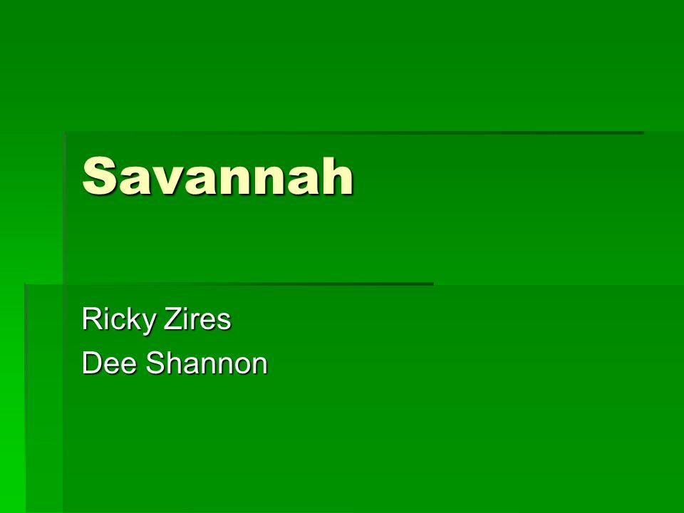 Savannah Ricky Zires Dee Shannon