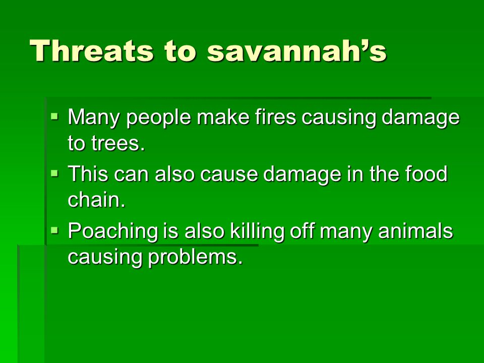 Threats to savannah's  Many people make fires causing damage to trees.