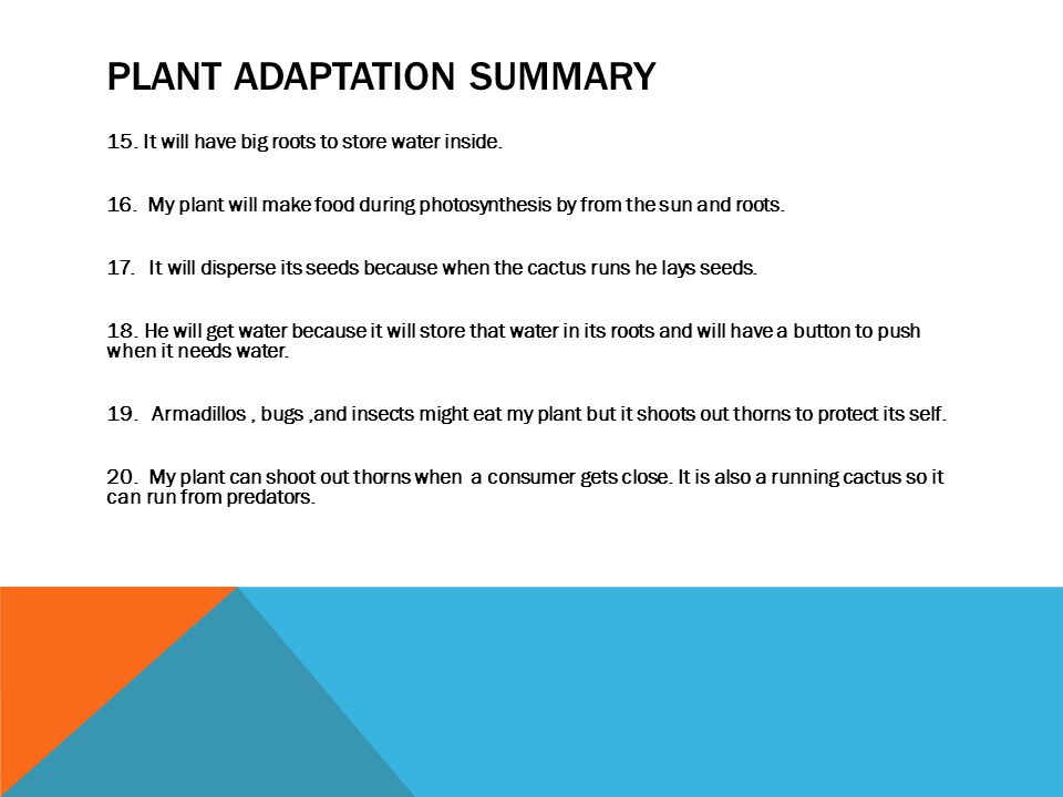 PLANT ADAPTATION SUMMARY 15. It will have big roots to store water inside.