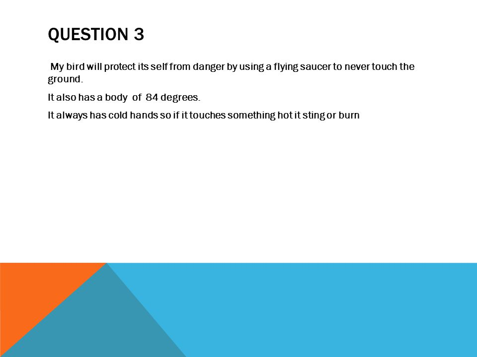 QUESTION 3 My bird will protect its self from danger by using a flying saucer to never touch the ground.