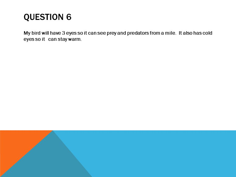QUESTION 7 & 8 My duck will eat worms, bugs, insects, and even fish.