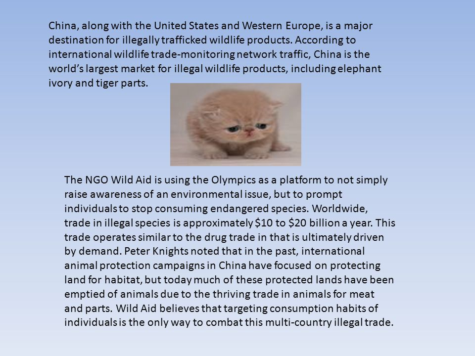 China, along with the United States and Western Europe, is a major destination for illegally trafficked wildlife products.