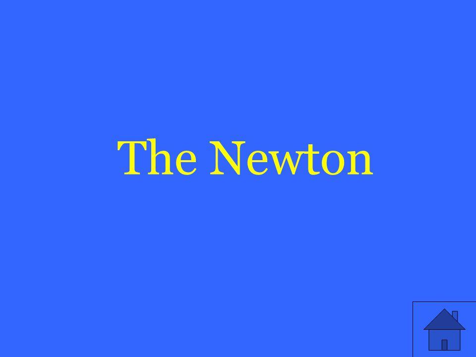 The Newton