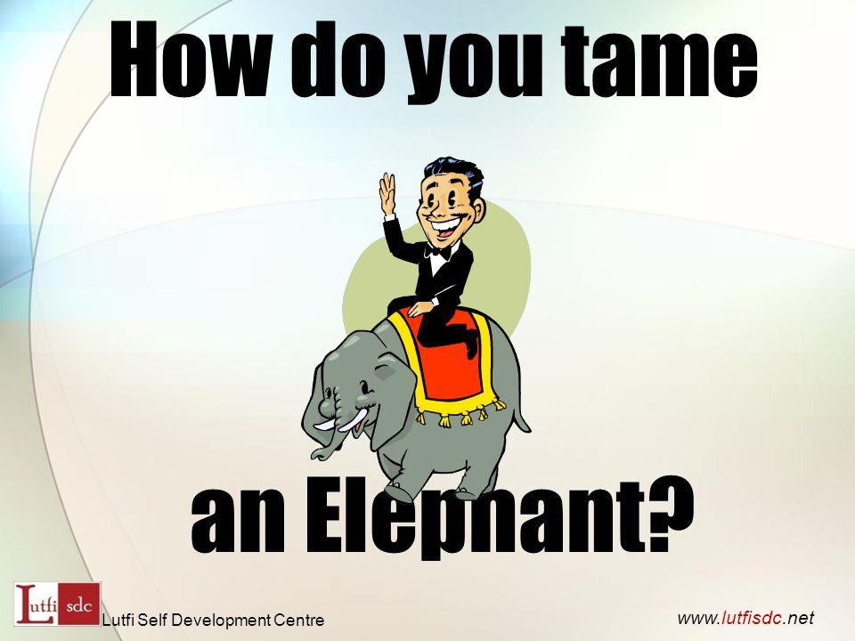 How do you tame an Elephant www.lutfisdc.net Lutfi Self Development Centre
