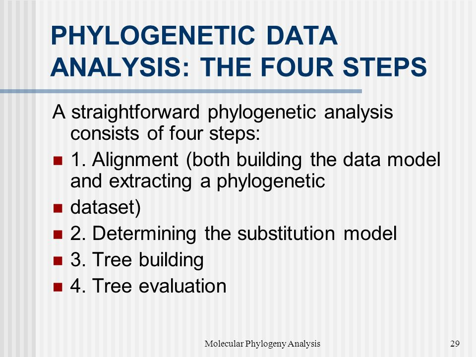 PHYLOGENETIC DATA ANALYSIS: THE FOUR STEPS A straightforward phylogenetic analysis consists of four steps: 1.