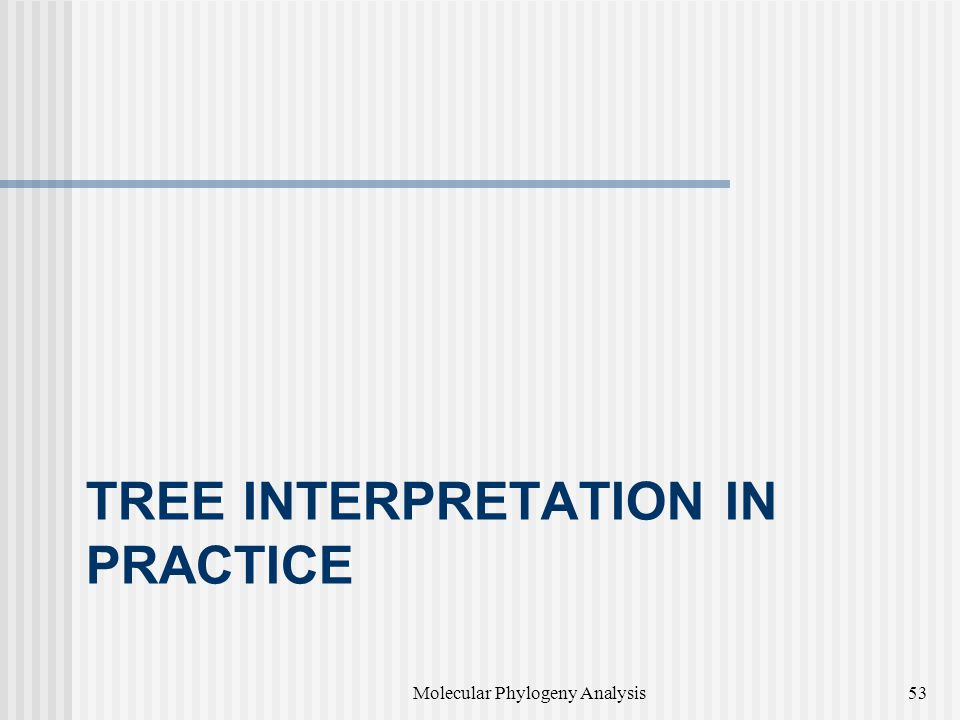 TREE INTERPRETATION IN PRACTICE Molecular Phylogeny Analysis53
