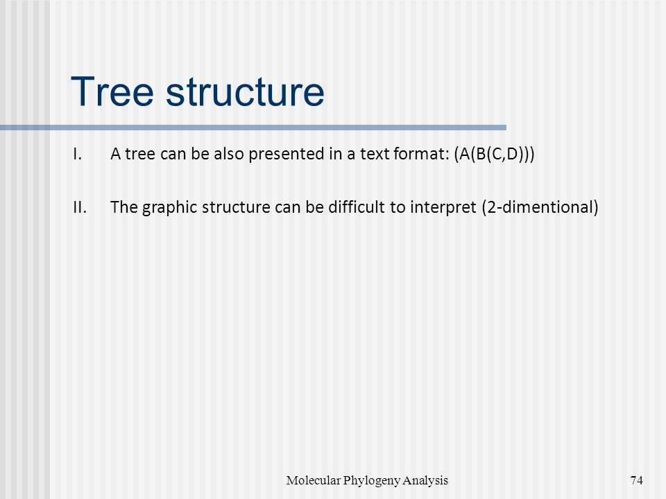 Tree structure I.A tree can be also presented in a text format: (A(B(C,D))) II.The graphic structure can be difficult to interpret (2-dimentional) Molecular Phylogeny Analysis74
