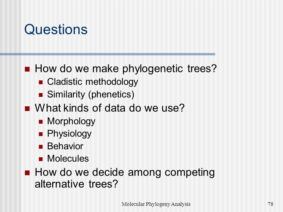 Questions How do we make phylogenetic trees.