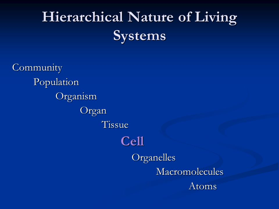 Hierarchical Nature of Living Systems Community Population Population Organism Organism Organ Organ Tissue Tissue Cell Cell Organelles Organelles Macromolecules Macromolecules Atoms Atoms