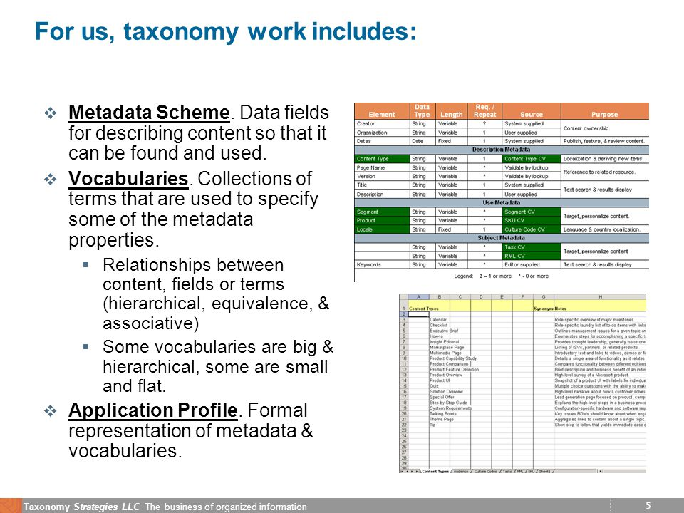 5 Taxonomy Strategies LLC The business of organized information For us, taxonomy work includes: v Metadata Scheme. Data fields for describing content