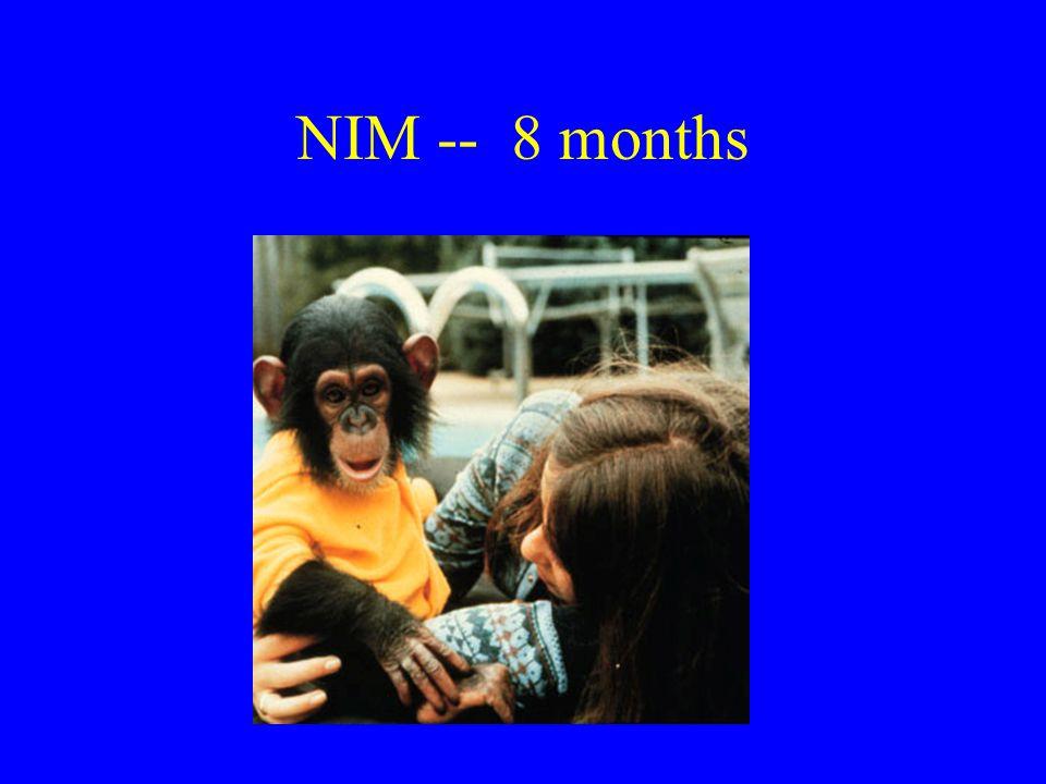 NIM -- 8 months