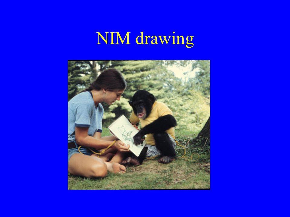NIM drawing
