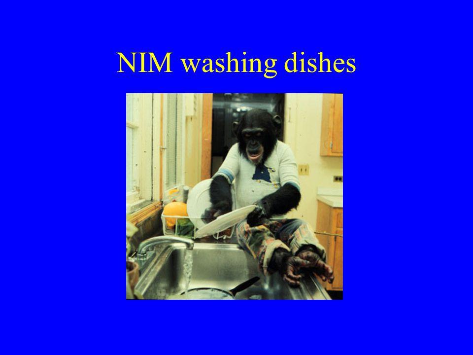 NIM washing dishes