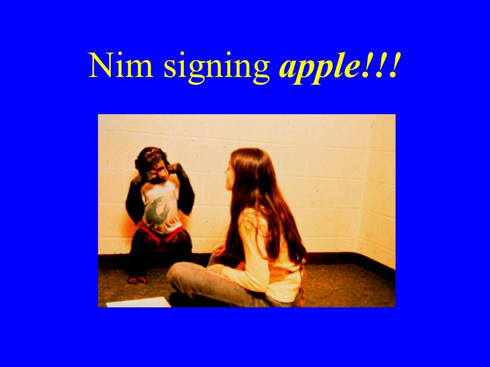 Nim signing apple!!!