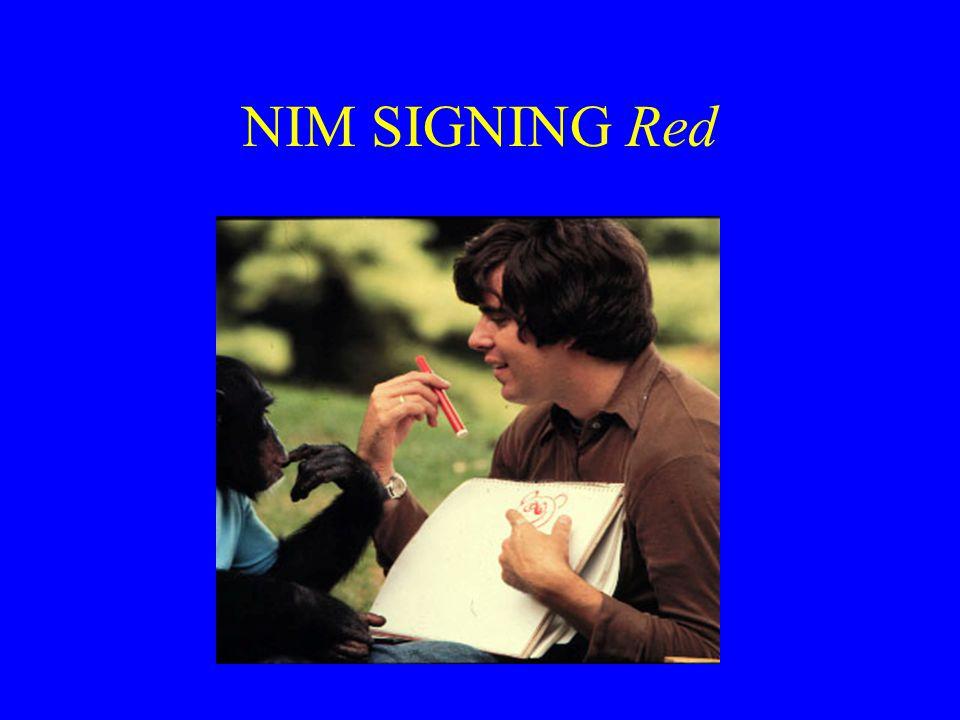 NIM SIGNING Red