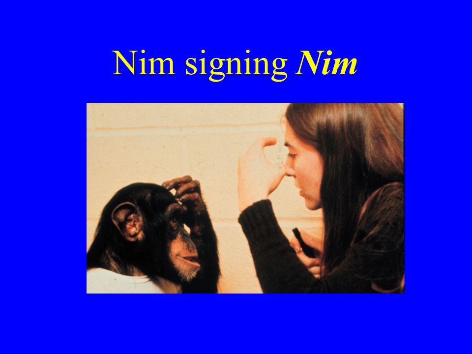Nim signing Nim