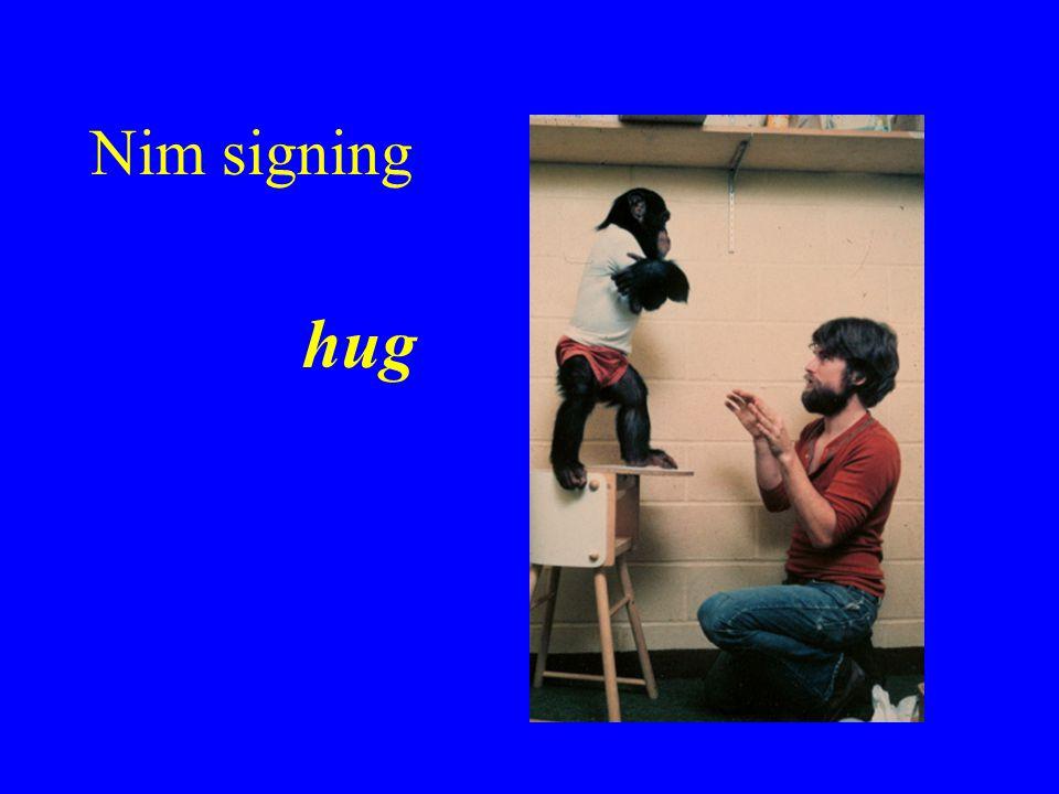 Nim signing hug