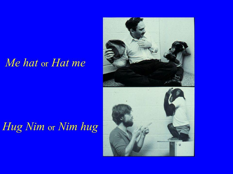 NIM SIGNING, Me hat or Hat me NIM SIGNING, Hug Nim or Nim hug