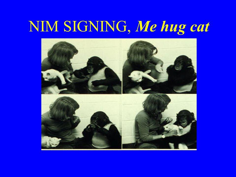 NIM SIGNING, Me hug cat