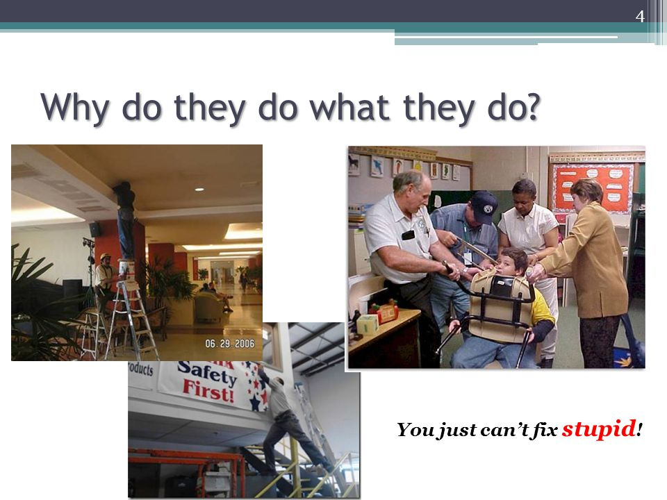 Why do they do what they do? 4 You just can't fix stupid !