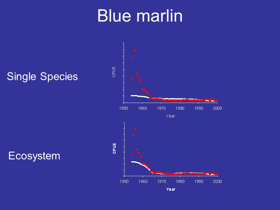 Blue marlin Single Species Ecosystem