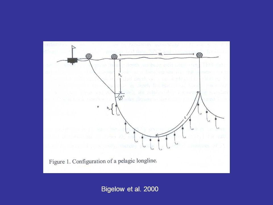 Bigelow et al. 2000