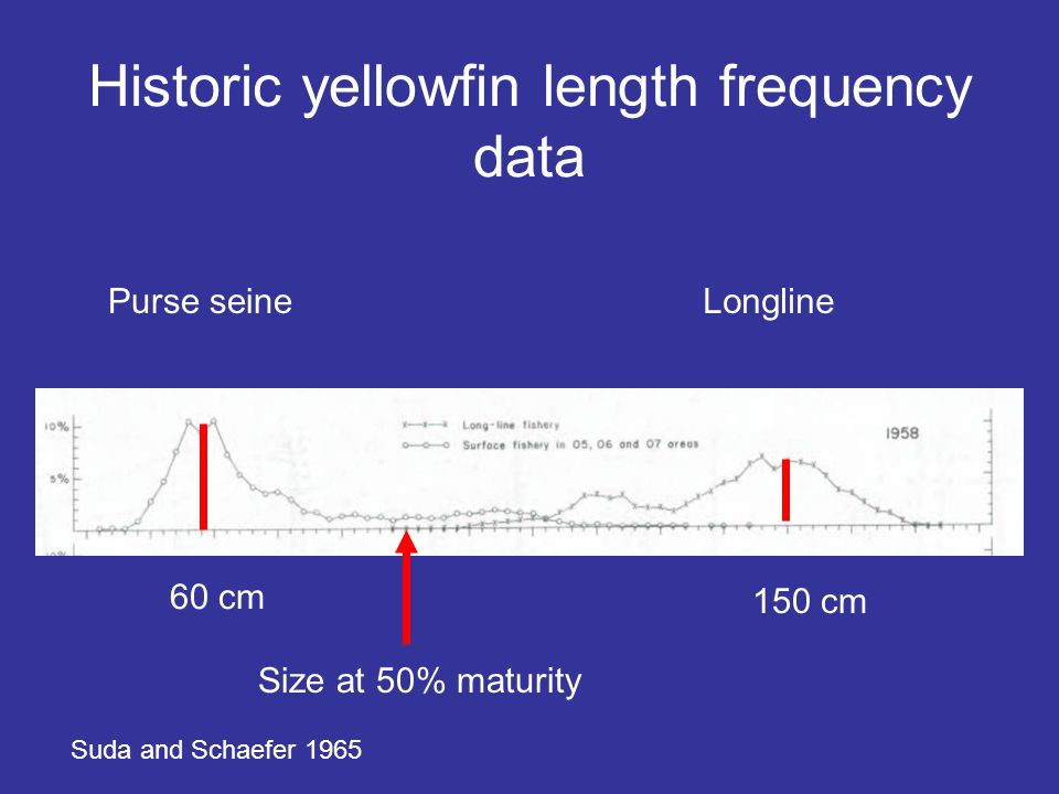 Historic yellowfin length frequency data 60 cm 150 cm Purse seineLongline Suda and Schaefer 1965 Size at 50% maturity
