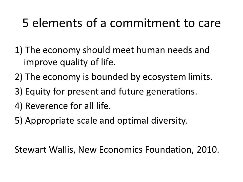 5 elements of a commitment to care 1) The economy should meet human needs and improve quality of life.