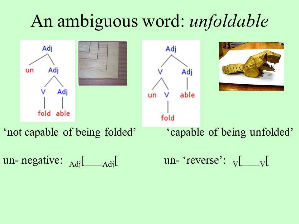 An ambiguous word: unfoldable 'not capable of being folded' 'capable of being unfolded' un- negative: Adj [___ Adj [ un- 'reverse': V [___ V [