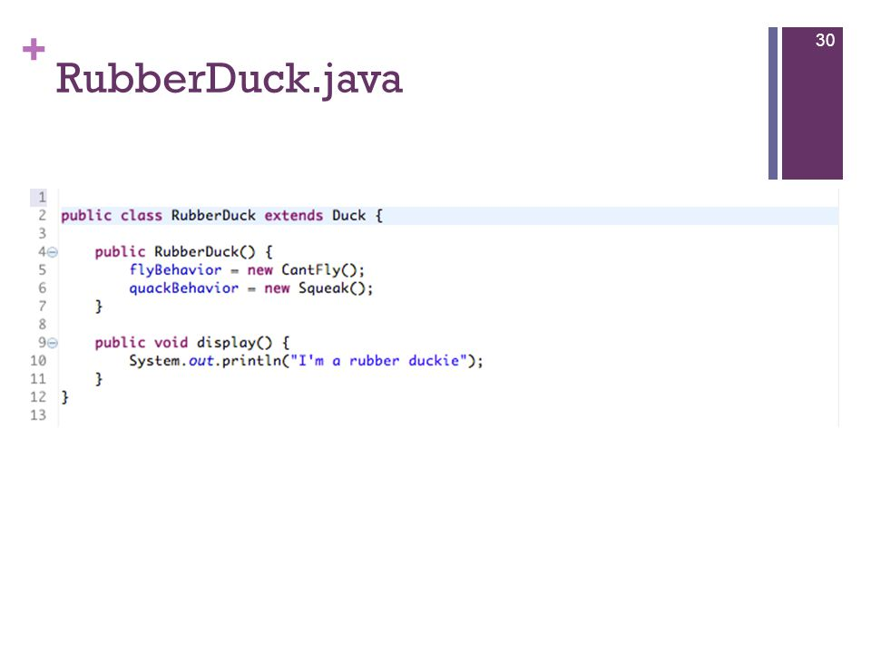 + RubberDuck.java 30