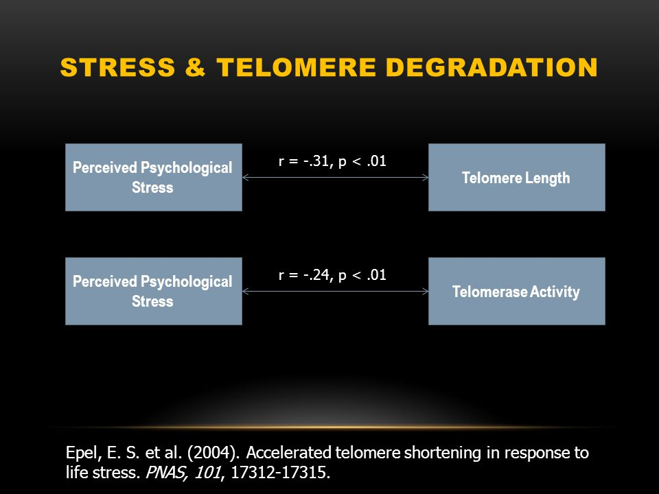 LETS TALK ABOUT STRESS Incredible findings.
