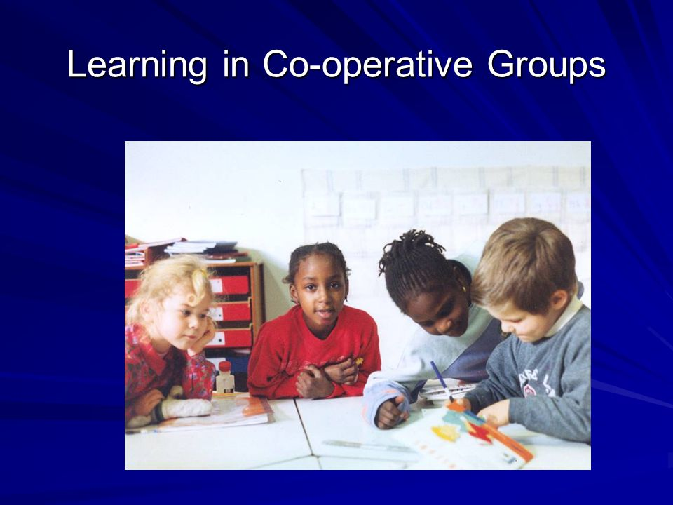Learning in Co-operative Groups