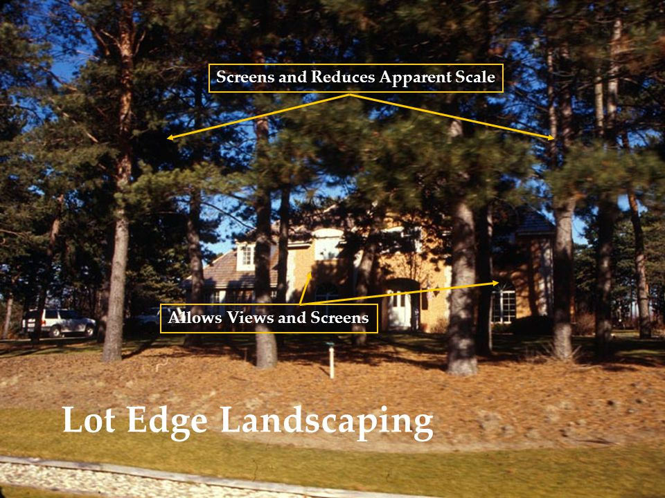 Lot Edge Landscaping Screens and Reduces Apparent Scale Allows Views and Screens