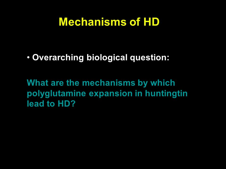 Mechanisms of HD Overarching biological question: What are the mechanisms by which polyglutamine expansion in huntingtin lead to HD?