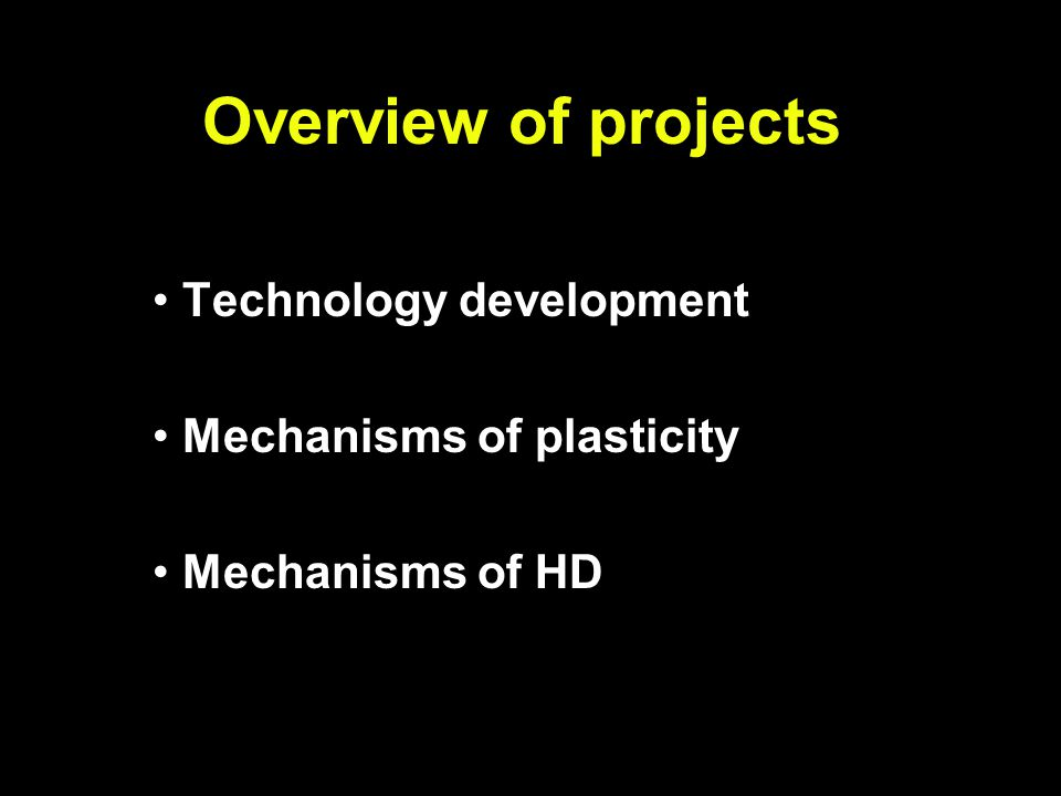 Overview of projects Technology development Mechanisms of plasticity Mechanisms of HD