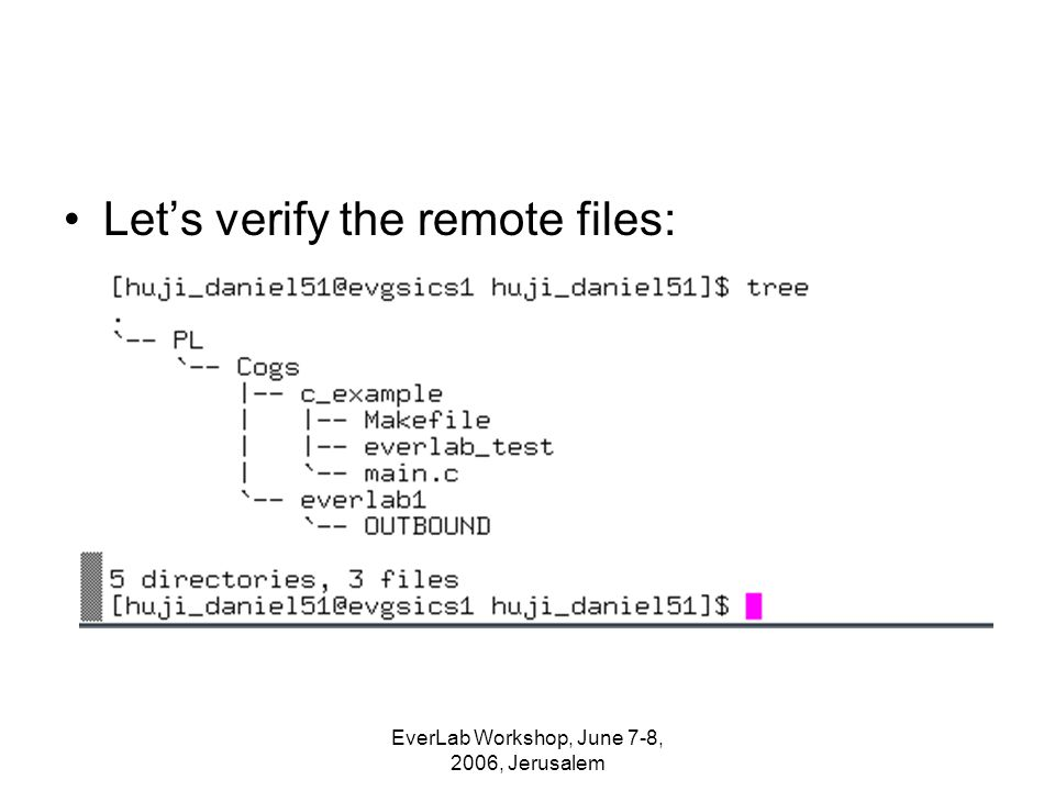 EverLab Workshop, June 7-8, 2006, Jerusalem Let's verify the remote files: