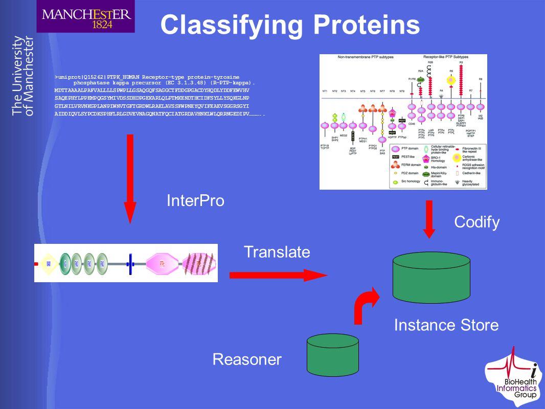 Classifying Proteins >uniprot|Q15262|PTPK_HUMAN Receptor-type protein-tyrosine phosphatase kappa precursor (EC 3.1.3.48) (R-PTP-kappa).