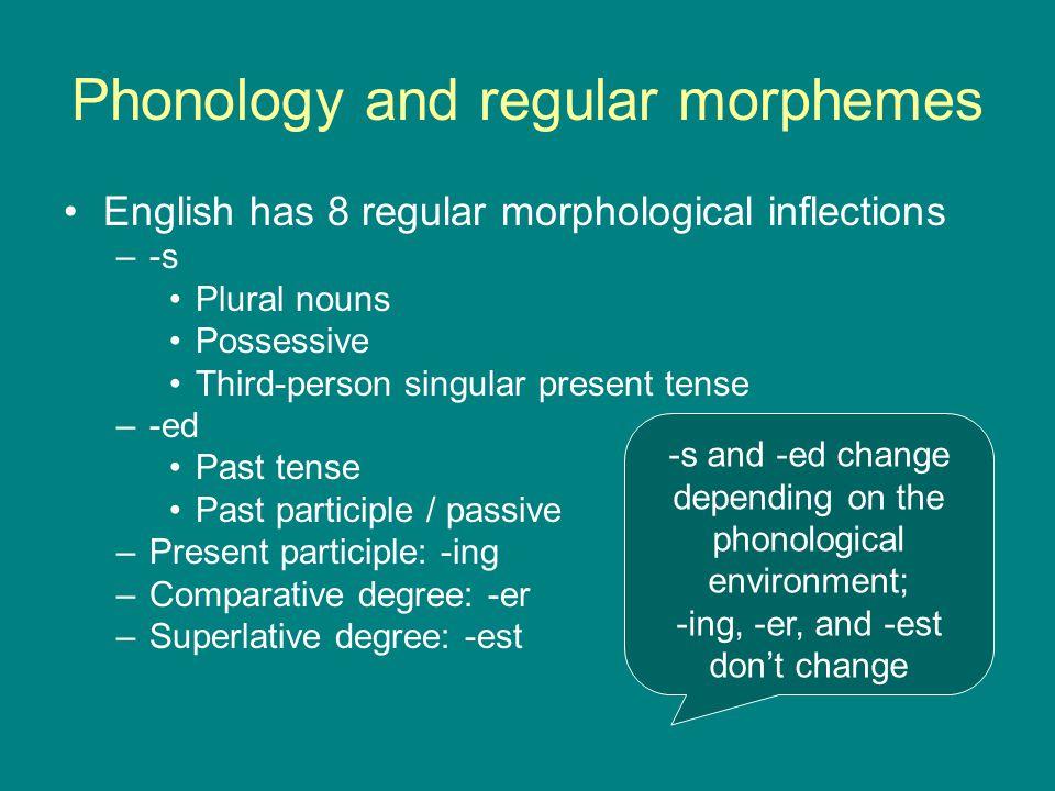 Phonology and regular morphemes English has 8 regular morphological inflections –-s Plural nouns Possessive Third-person singular present tense –-ed P