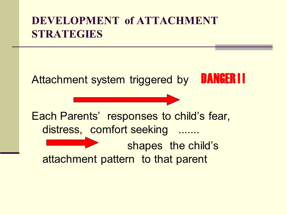 DEVELOPMENT of ATTACHMENT STRATEGIES Attachment system triggered by DANGER .