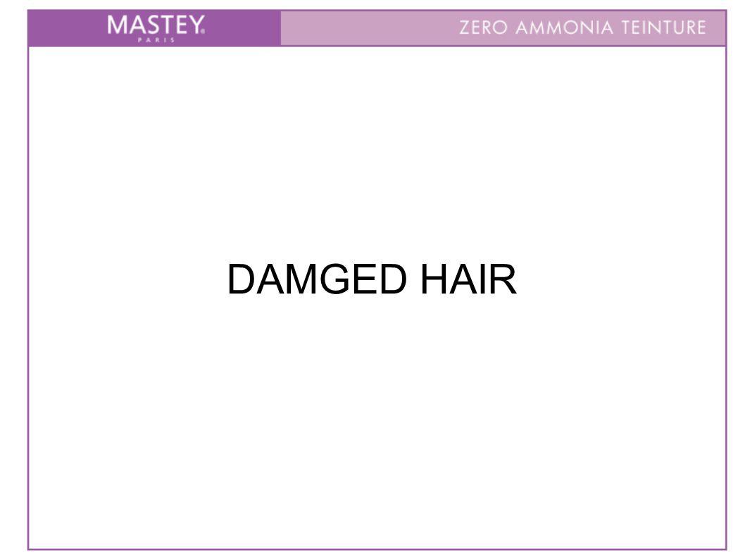 DAMGED HAIR
