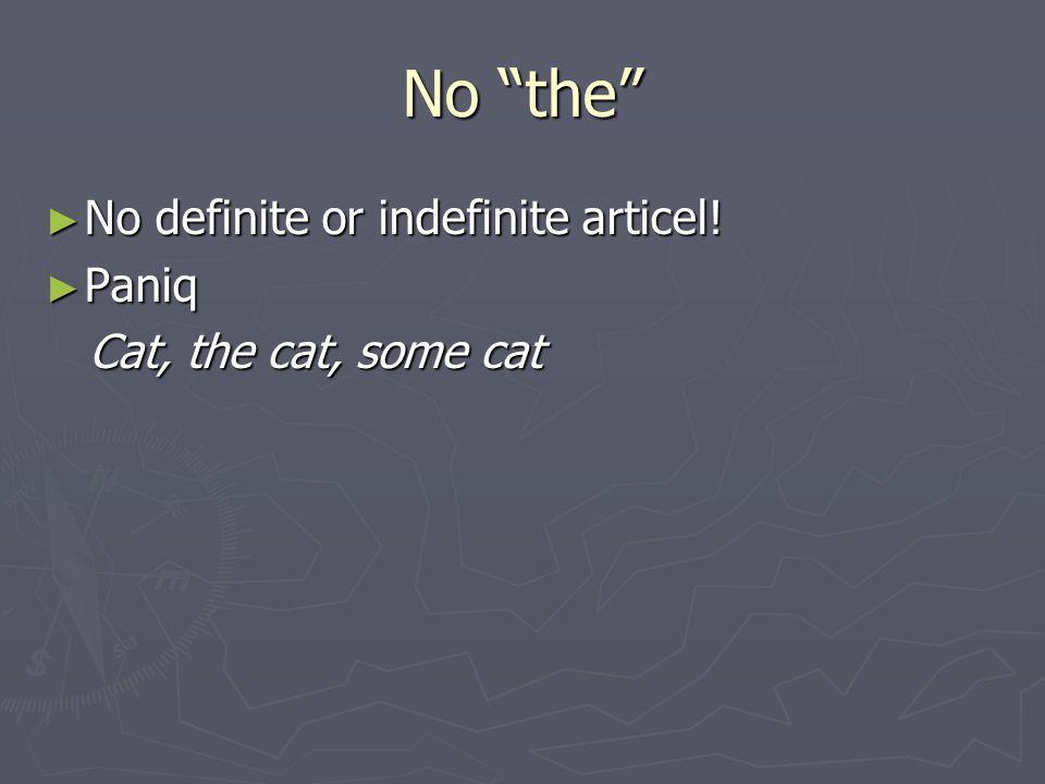 No the ► No definite or indefinite articel! ► Paniq Cat, the cat, some cat Cat, the cat, some cat