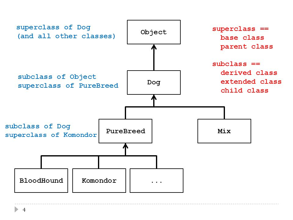 4...KomondorBloodHound PureBreedMix Dog Object subclass of Object superclass of PureBreed subclass of Dog superclass of Komondor superclass of Dog (and all other classes) superclass == base class parent class subclass == derived class extended class child class