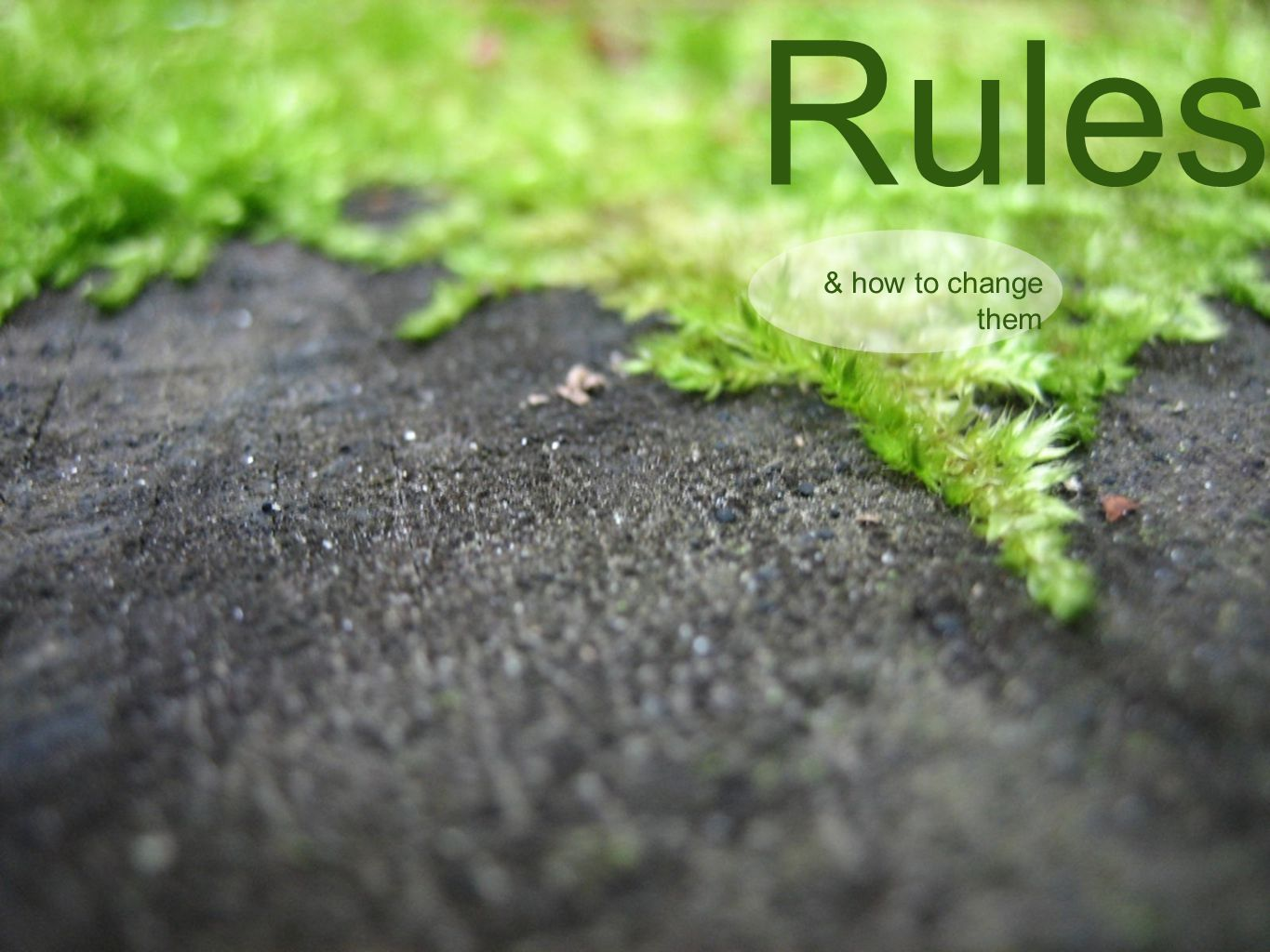 Stupid Rules & how to change them