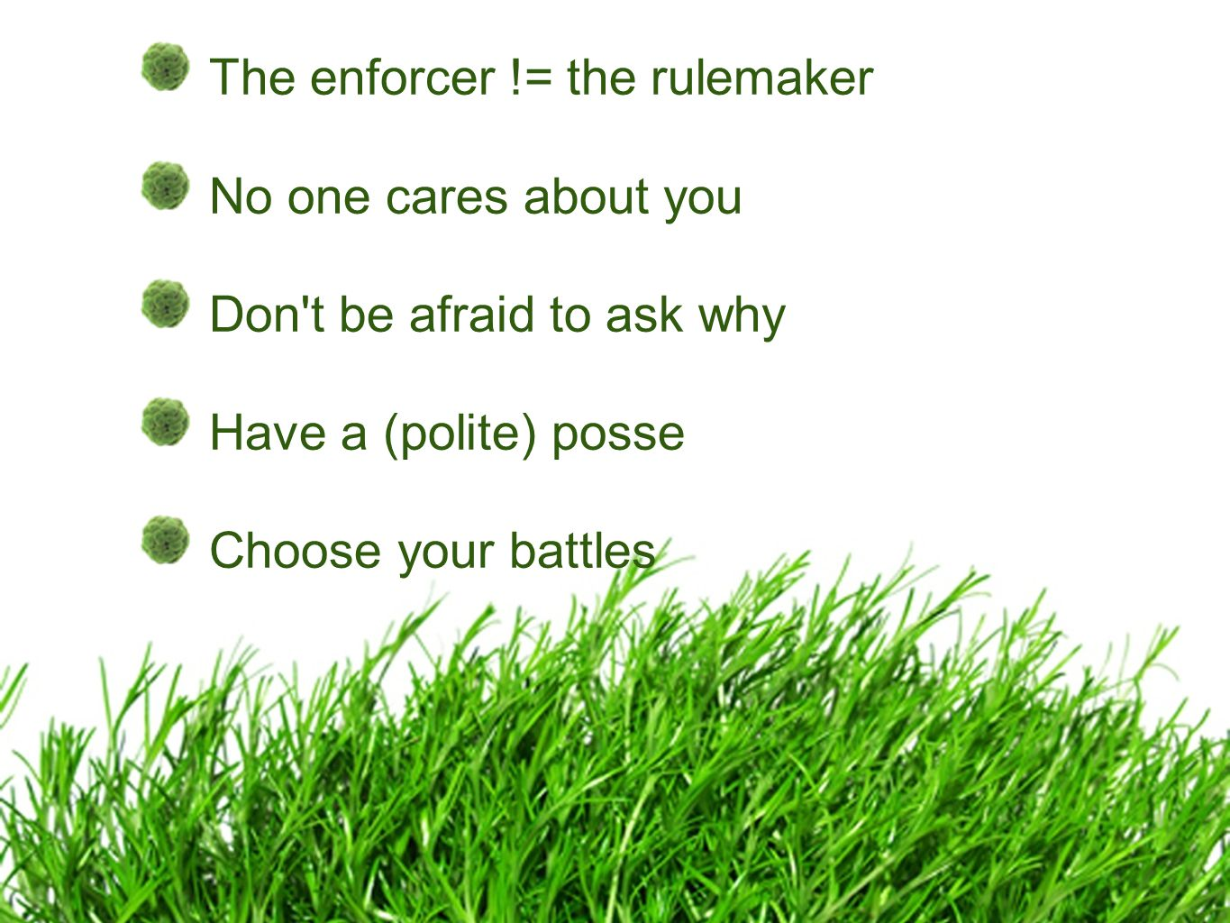 The enforcer != the rulemaker No one cares about you Don t be afraid to ask why Have a (polite) posse Choose your battles