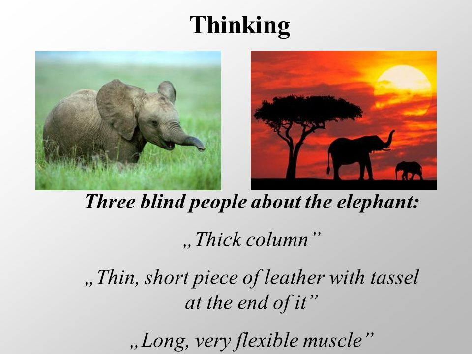 "Thinking Three blind people about the elephant: ""Thick column ""Thin, short piece of leather with tassel at the end of it ""Long, very flexible muscle"