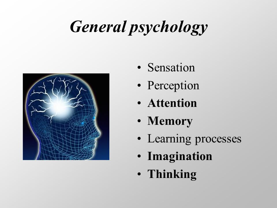 General psychology Sensation Perception Attention Memory Learning processes Imagination Thinking