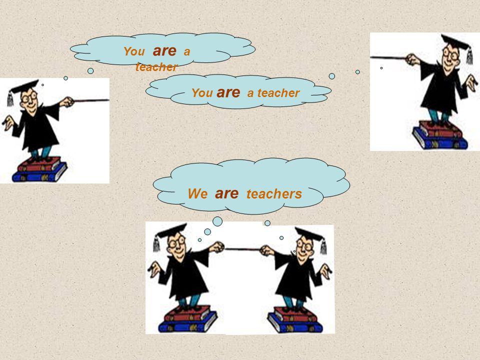 You are a teacher We are teachers