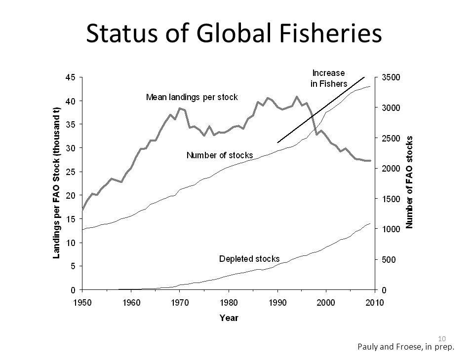Status of Global Fisheries 10 Pauly and Froese, in prep.