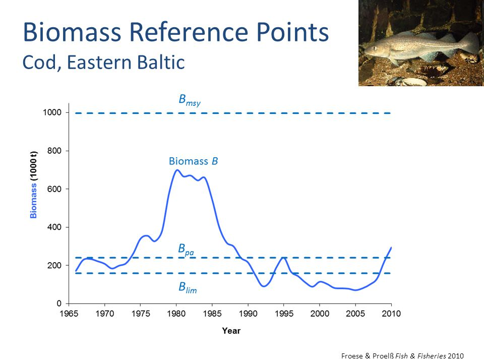 Biomass Reference Points Cod, Eastern Baltic Froese & Proelß Fish & Fisheries 2010